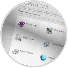 Digipro<sup>&reg;</sup> Custom Content Management System (CMS)